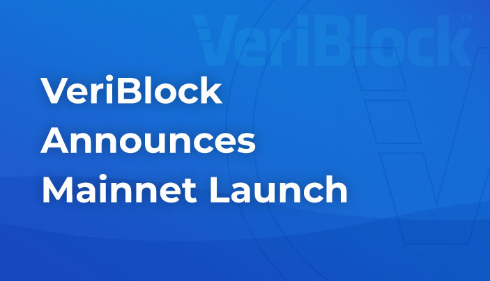 Veriblock Update